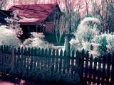 false color G1 IR demo.jpg