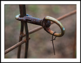 Gate Snap Lock with Wire