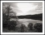 Early Morning at Price Lake
