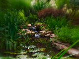 Lensbaby on G1