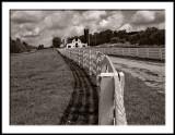 Dairy Farm on a Hill 2