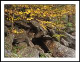 Tumbled Rocks