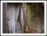 Alley Abstract