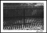Iced Fence with Shadows