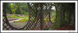 Afternoon Under the Arbor Panorama