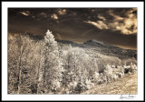 Grandfather Mountain/Winter Day