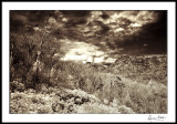 Blue Ridge Winter Day/IR mono
