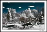 Scroll Garden Bridge