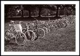 Bikes for Sale--Cheap