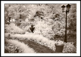 Entrance Garden, IR