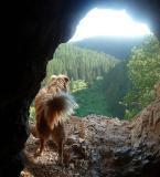 Timon Cave