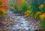 Fall Festive Display - Bartlett, NH   #0678