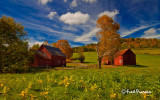 Two Red Barns - MG-6001 Which image do you like best (see below)