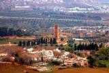 Mosque,minaret Mansourah tlemcen et dependances