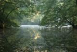 Pond early autumn