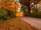 Central Iowa Fall Colors