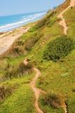 Torrey Pines path.JPG