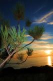 Torrey Pines 101508.jpg
