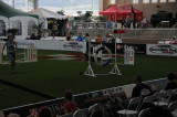 SD Fair - Agility Trials.JPG