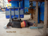 En el mercado de Barranquilla abundan los cuerpos ..