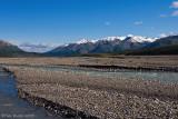 67361 -  Toklat River, Denali National Park