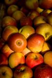 apples - farmer's market