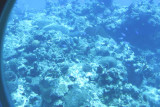 Chankanaab Underwater Marine Park