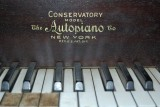 Autopiano in Manley Road House