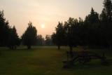 Manley Sunrise