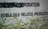edible oils1.jpg