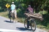 basic transport.jpg
