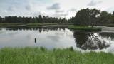 Wetlands017.jpg