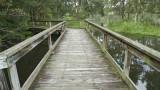 Wetlands027.jpg