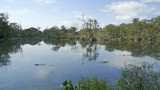 09_02_20 Wetland Centre