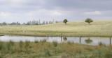 Panorama02.jpg