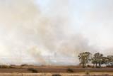 Fire115.jpg