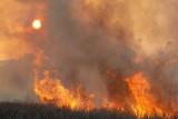 09_09_06 Maryland Fire