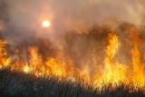 Fire121.jpg