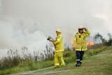 Fire137.jpg