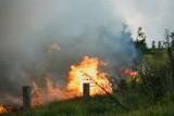 Fire140.jpg