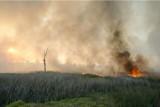 Fire141.jpg