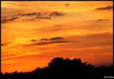 Gray spots in an orange sky