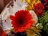 Grafton Street - From a Flower Stall