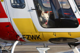 Helicopters......not just for people!