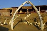 Flamingo Lodge Entrance