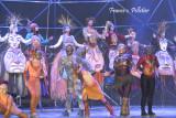 :: Les chemins invisibles Cirque du Soleil ::