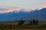 Mountain Light on the Whites