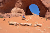 Sheep Drive in the Ear of the Wind Arch