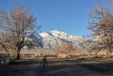 Manzanar, Looking West