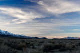 Late Afternoon, Between Big Pine and Independence #4